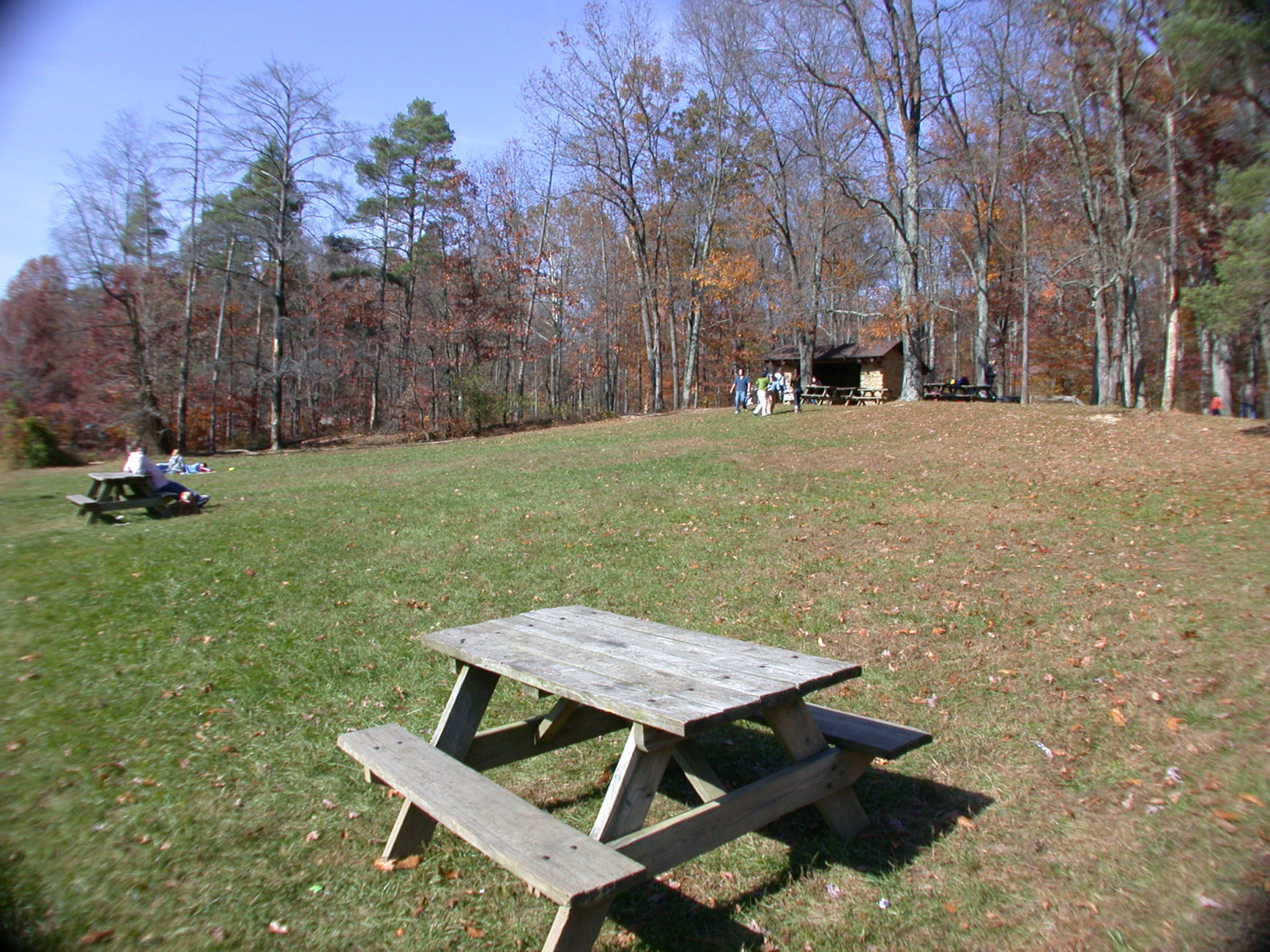 Ogle Lake picnic area and non-reservable shelter house
